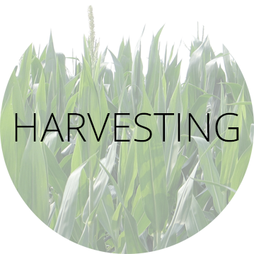 Harvesting Label