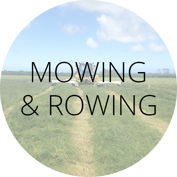 Mowing & Rowing Label
